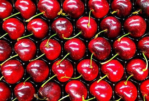 Huesos de cereza para relleno de cojín (5kg)